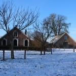 Kuiperij in de sneeuw in februari