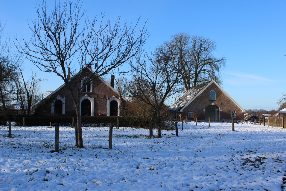 Kuiperij in de sneeuw
