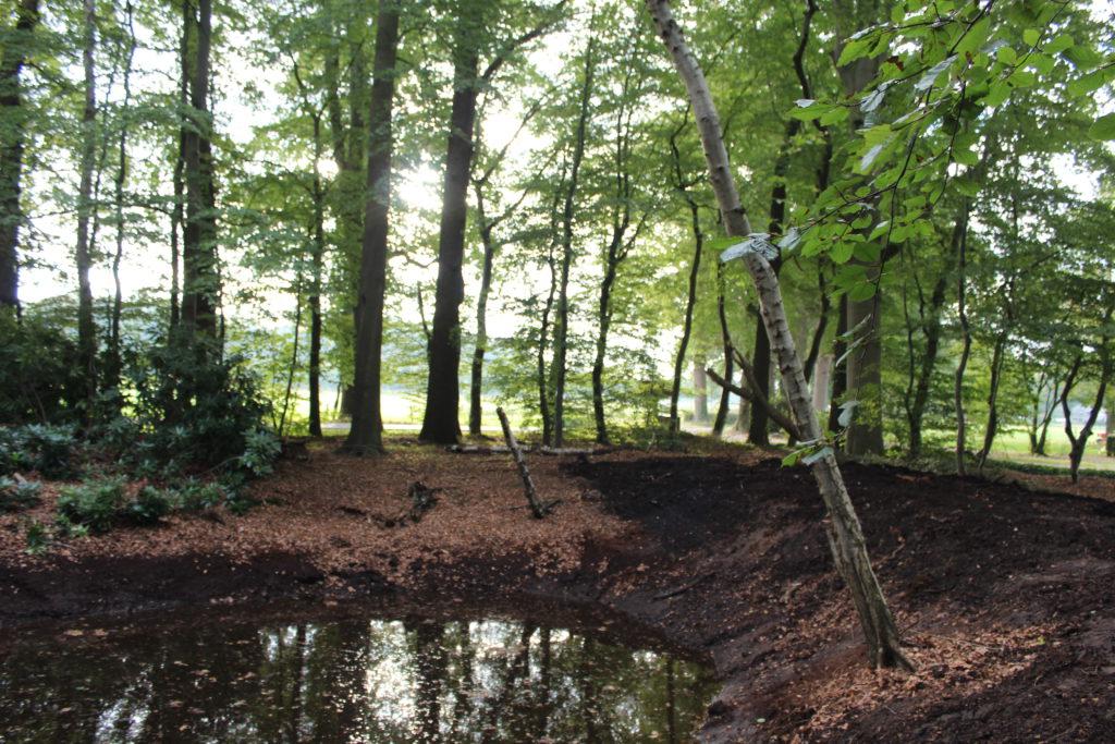 Uitgebaggerde poel/vijver op het 'eilandje' voor de boerderij aan de Diepenveenseweg.